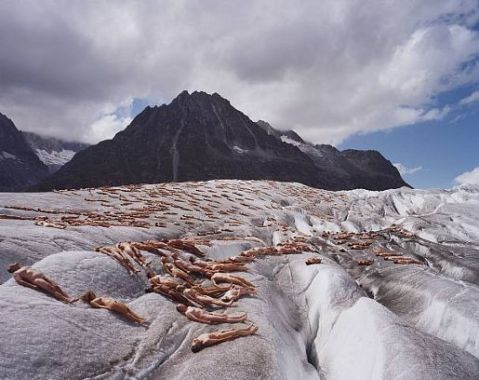 greenpeace-aletsch-glacier-bodies